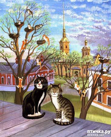 фото 15: Котики Татьяны Родионовой