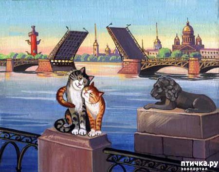 фото 17: Котики Татьяны Родионовой