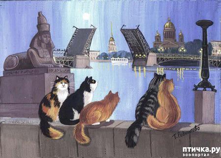 фото 20: Котики Татьяны Родионовой