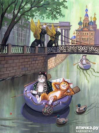 фото 26: Котики Татьяны Родионовой