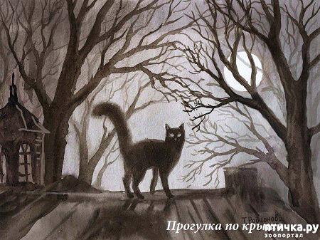 фото 38: Котики Татьяны Родионовой
