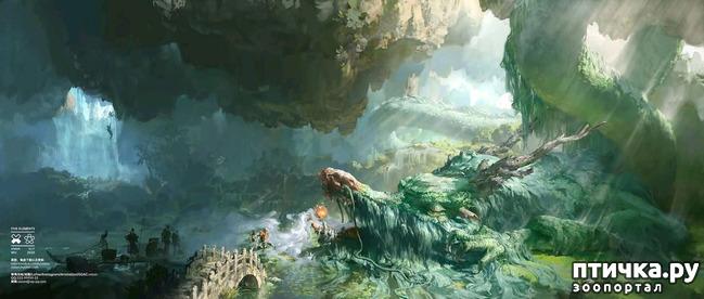 фото 8: Китайские Драконы