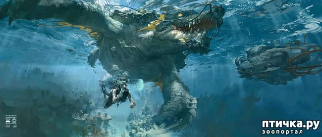 фото 9: Китайские Драконы