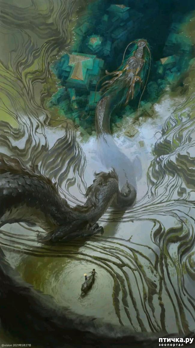 фото 5: Китайские Драконы