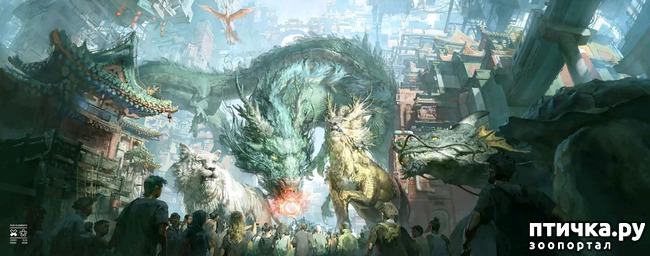 фото 10: Китайские Драконы