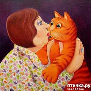 фото: Анекдоты про кошек.